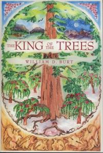 BOOK 1—2400 PX HIGH