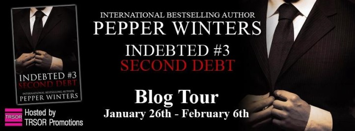 second debt blog tour (1)